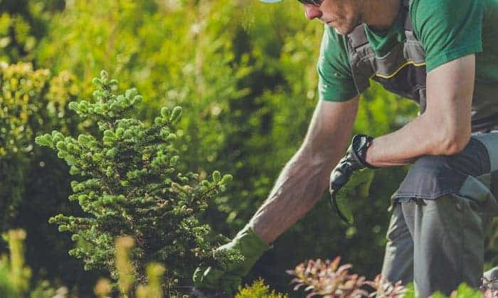 best work gloves for landscaping